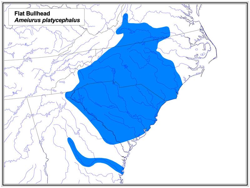 Flat Bullhead map