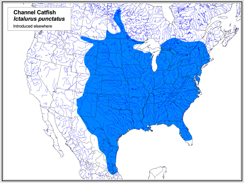 Channel Catfish map