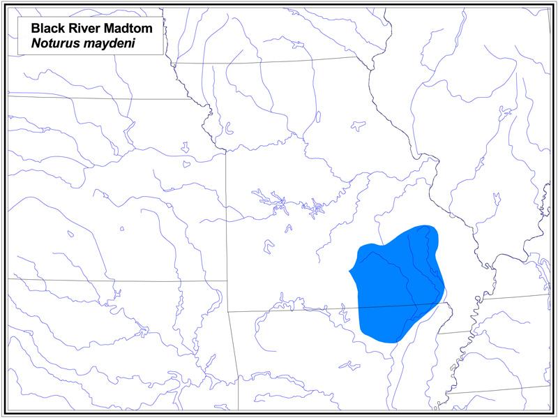 Black River Madtom map