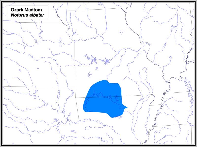Ozark Madtom map