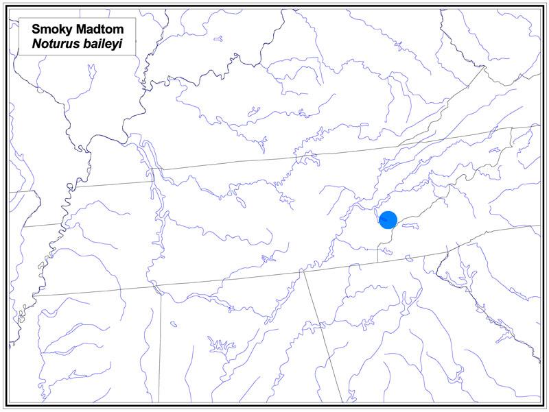 Smoky Madtom map