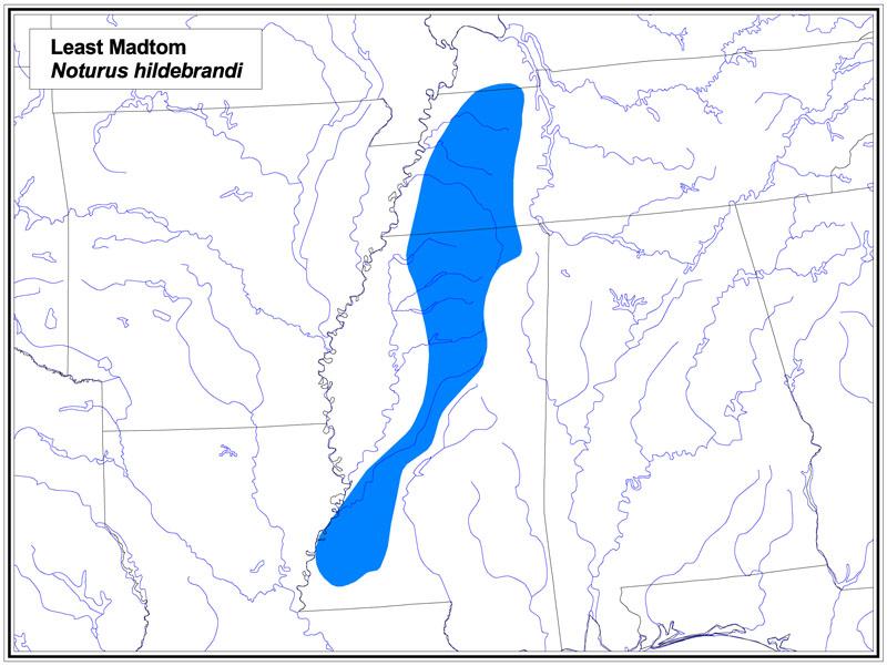 Least Madtom map