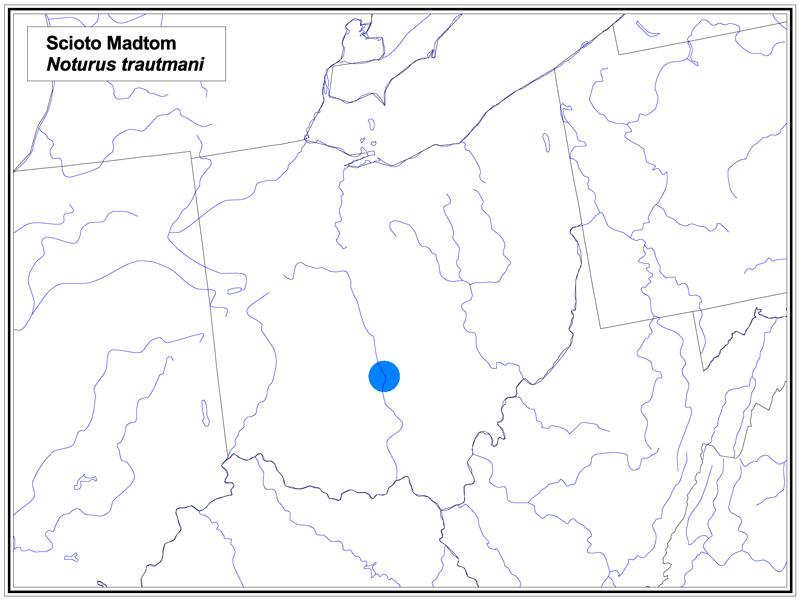 Scioto Madtom map