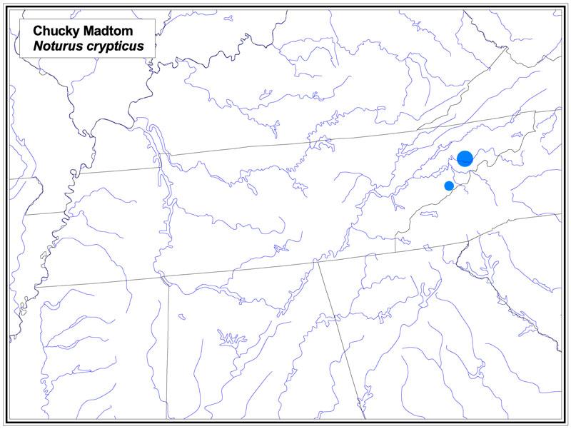 Chucky Madtom map