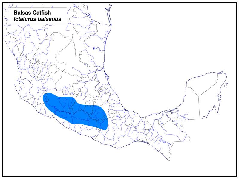 Balsas Catfish map