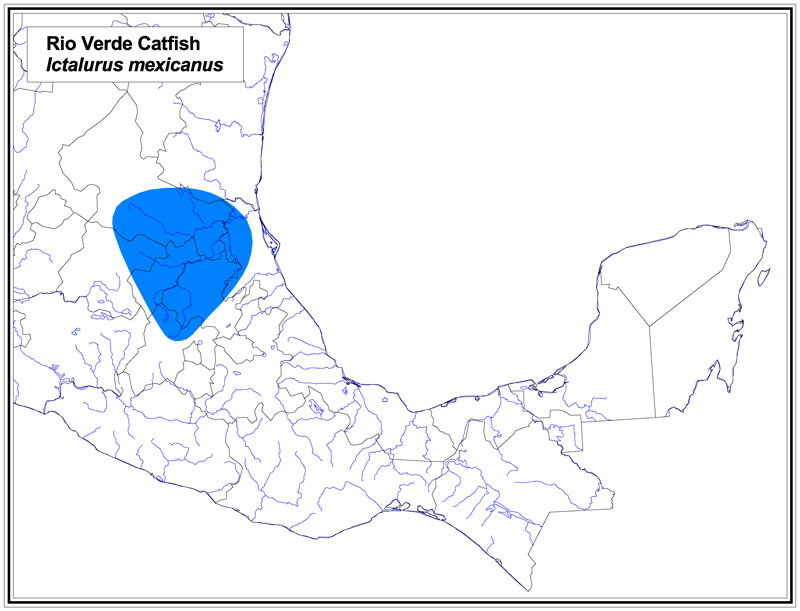 Rio Verde Catfish map