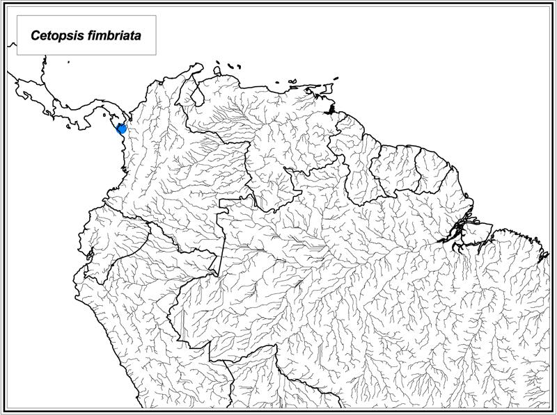 Cetopsis fimbriata map