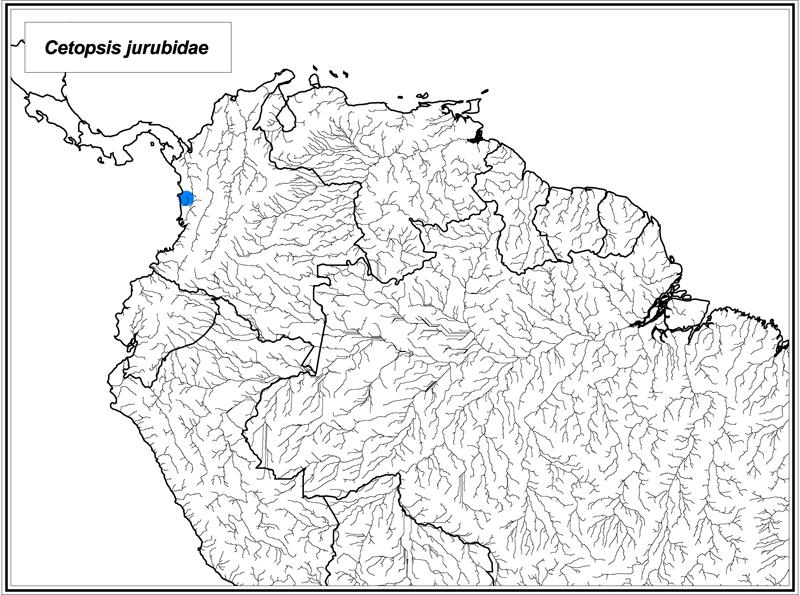 Cetopsis jurubidae map