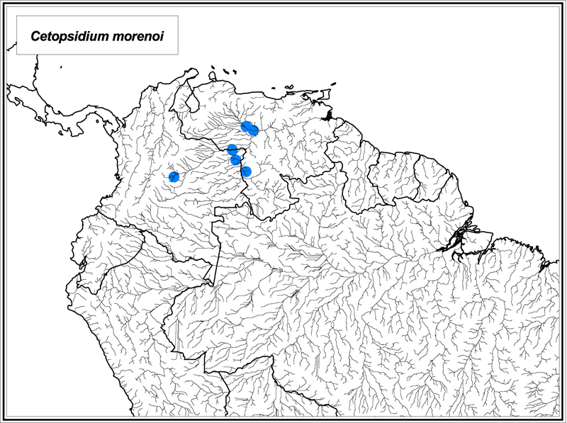 Cetopsidium morenoi map
