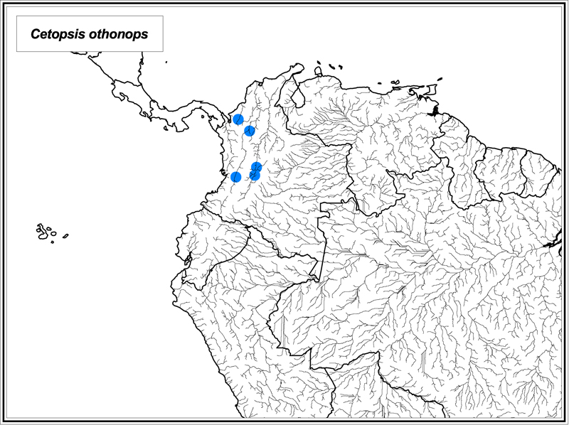 Cetopsis othonops map