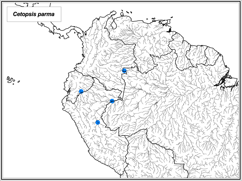 Cetopsis parma map