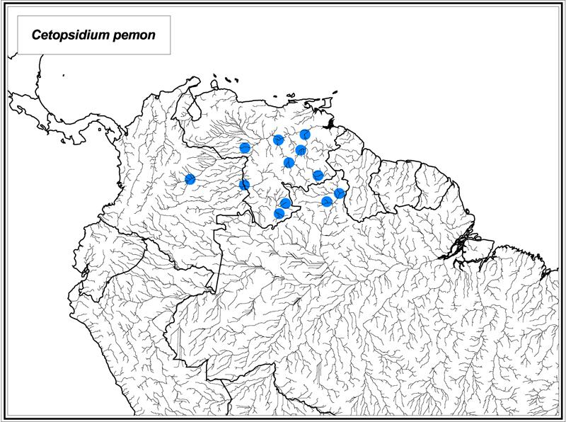Cetopsidium pemon map