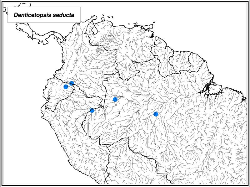 Denticetopsis seducta map