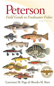 Peterson Field Guide to Freshwater Fishes book cover