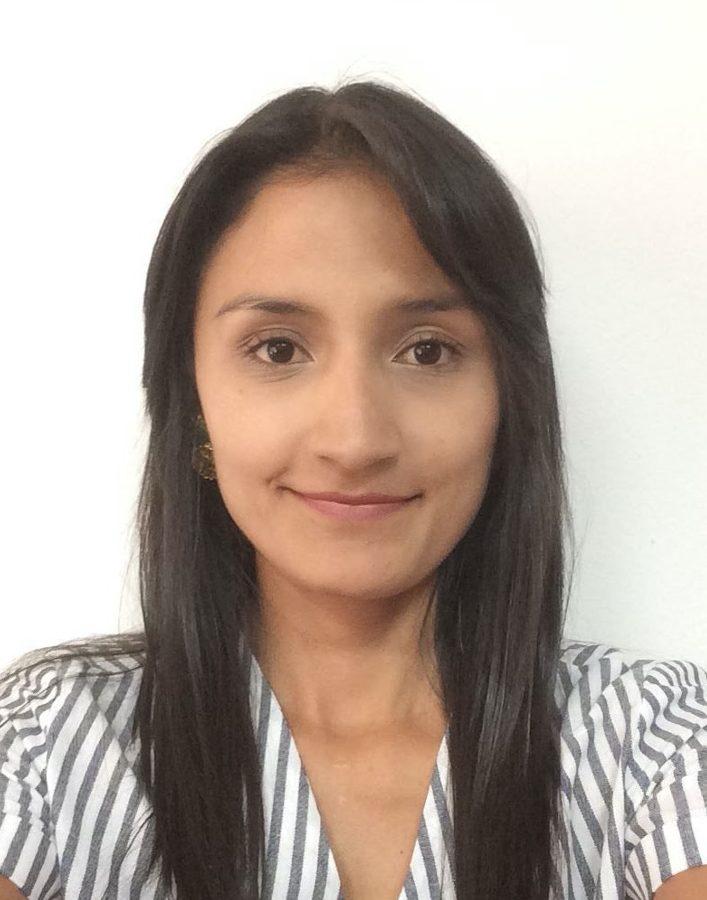 Laura A. Rincón Rodriguez