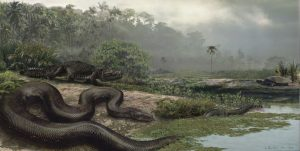 This artist's rendering shows how Titanoboa may have looked in its natural environment 60 million years ago. Florida Museum illustration by Jason Bourque