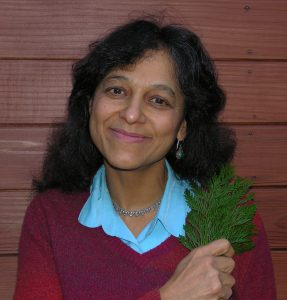 Nalini Nadkarni, 2013 recipient of the Florida Museum of Natural History's Archie F. Carr Medal. Photo courtesy of University of Utah