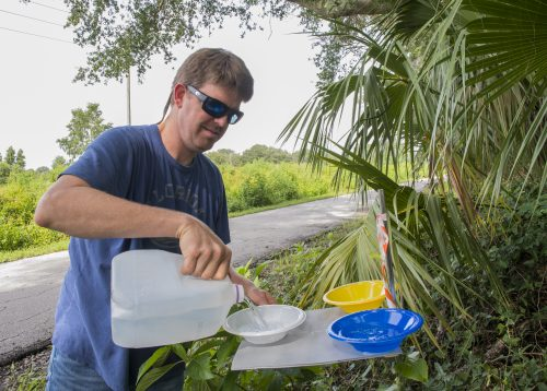 Research associate Josh Campbell sets an insect trap by pouring soapy water into bowls. The bugs caught in this water will be brought back to the lab to be identified later. ©Florida Museum photo by Jeff Gage