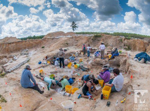 people at Montbrook dig site