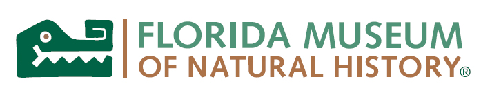 1990s, Florida Museum of Natural History logo