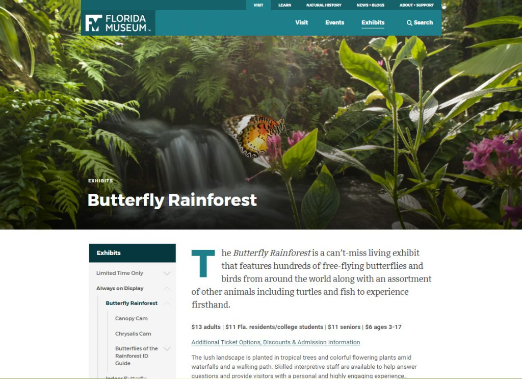 Desktop view of our new Butterfly Rainforest pages