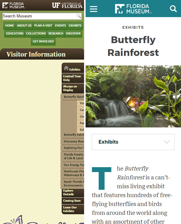 Smart phone view of our Butterfly Rainforest pages