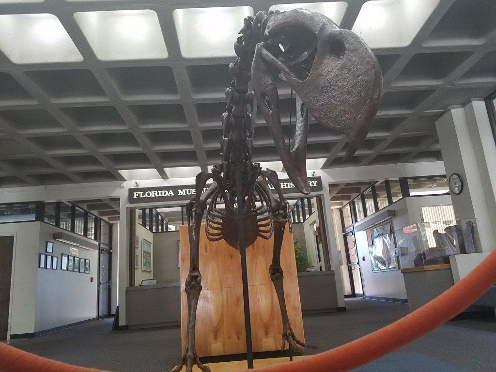 terror bird in lobby