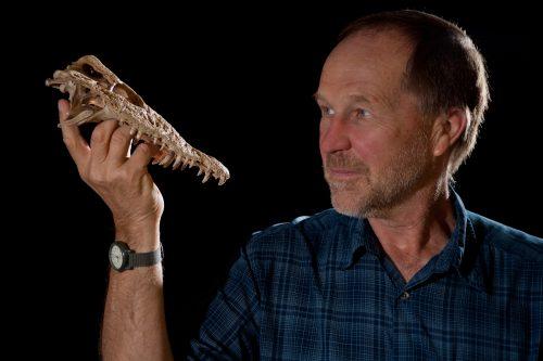 scientist holding fossil crocodile skull