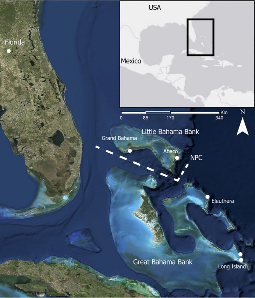 illustration of bahamas with dividing channel marked