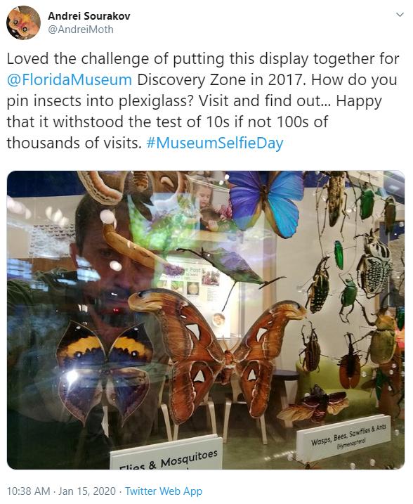 man taking selfie behind butterfly display