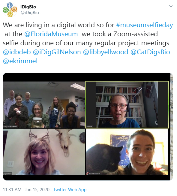 four frames from a video conference