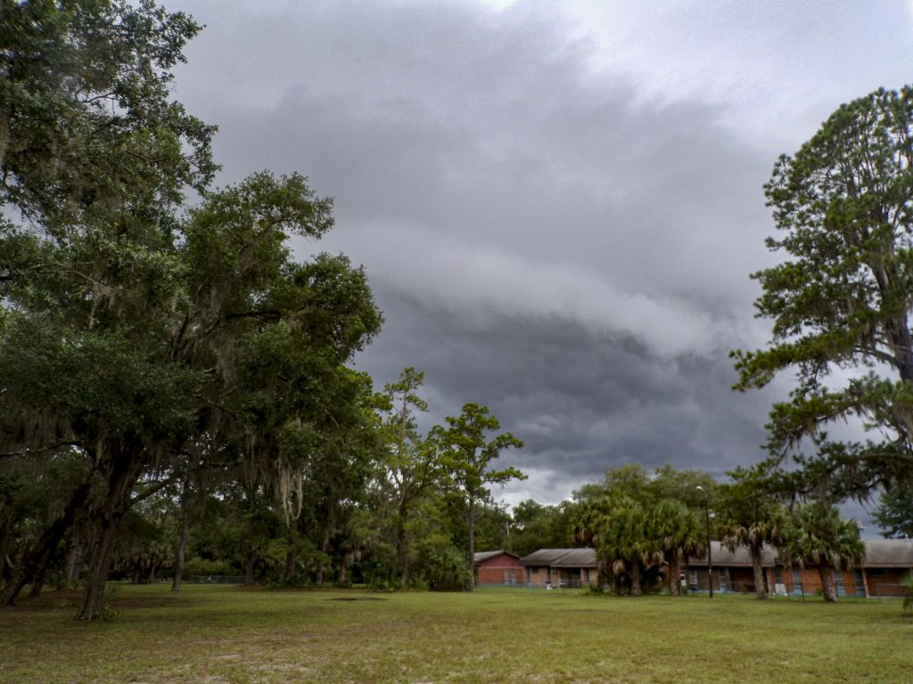 A photo of a lot with trees and buildings with storm clouds.