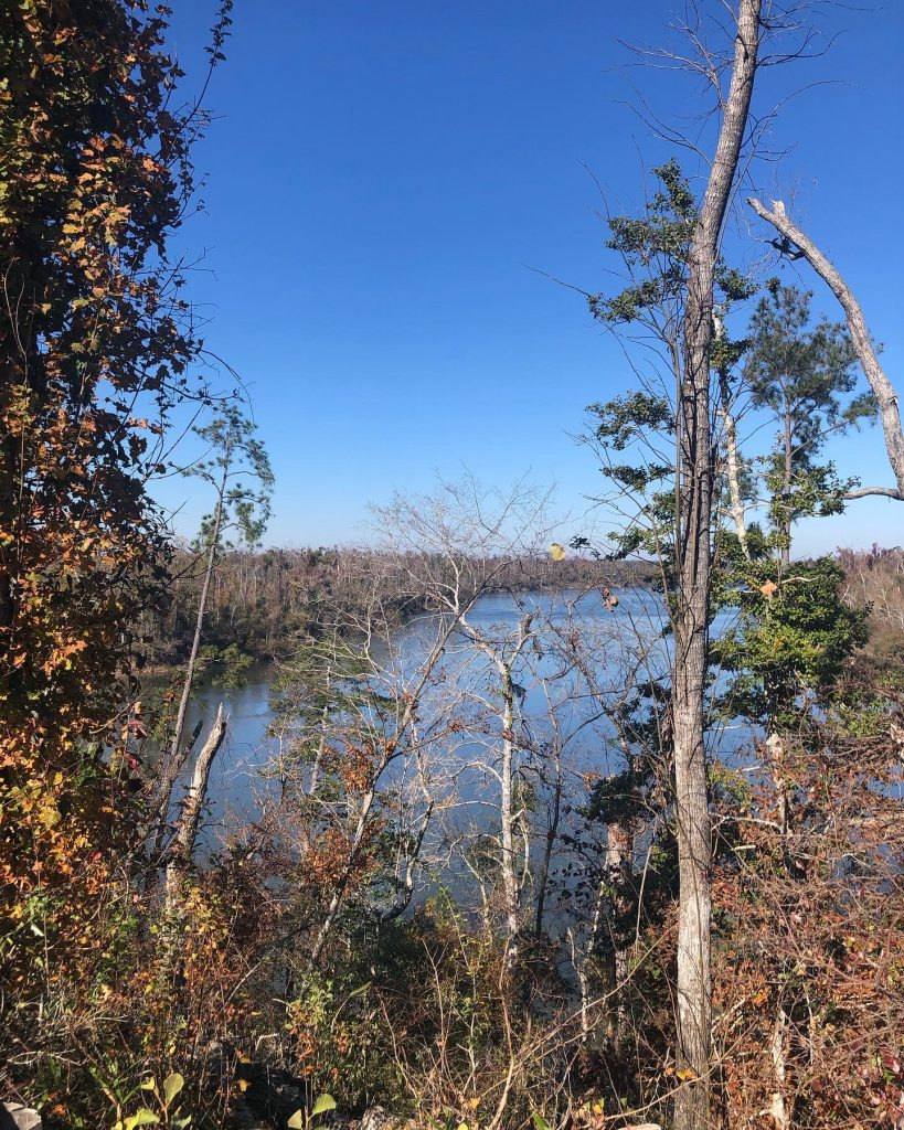 view of river from bluff with trees