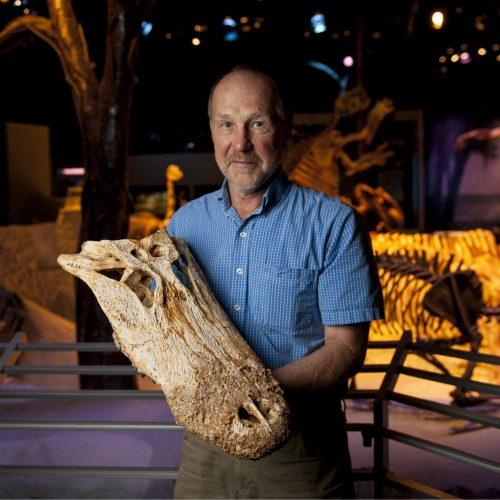 man holding alligator skull in museum exhibit
