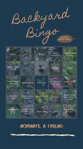 backyard bingo card with nature items