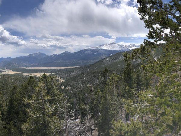 Mountains and trees of Rocky Mountain National Park