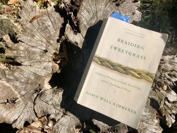 photo of Braiding Sweetgrass cover on stump