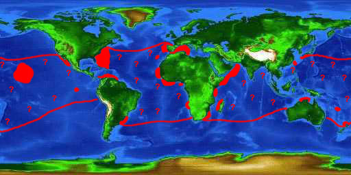 World distribution map for the bigeye thresher