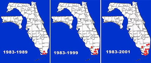 Florida distribution map for the Mayan cichlid: range expansion since introduction in 1983