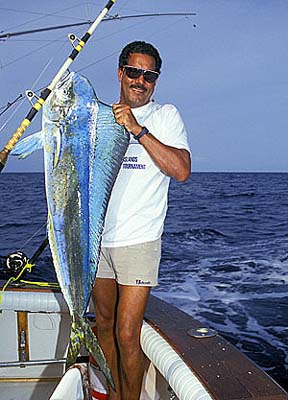 Dolphinfish weighing over 25 pounds. Photo © Doug Perrine