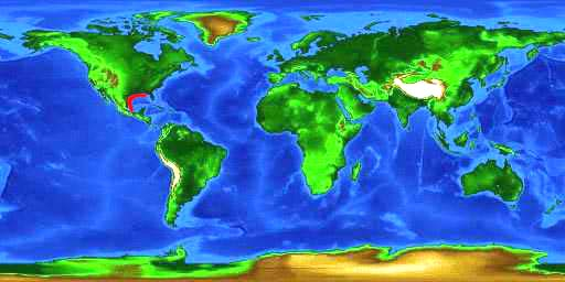 World distribution map for the spreadfin skate