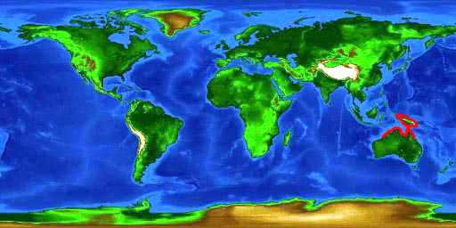 World distribution map for the tasselled wobbegong