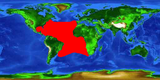 World distribution map for the white marlin