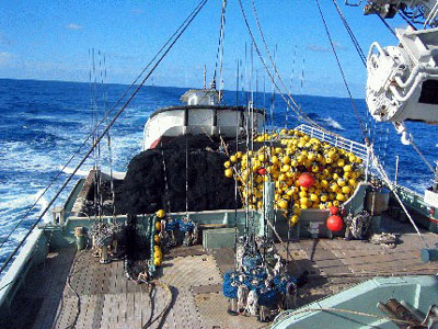 Purse seine gear used for tuna fishing. Photo © Craig Knickle