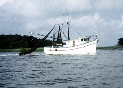 Shrimp trawlers are responsible for a large portion of the juvenile lane snapper mortality. Photo courtesy NOAA