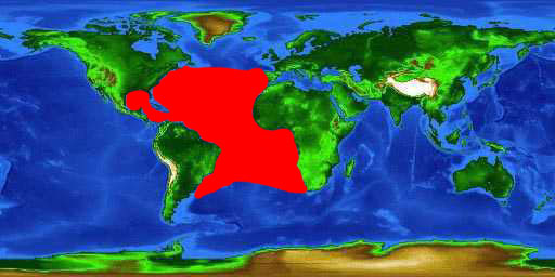 World distribution map for the blue marlin