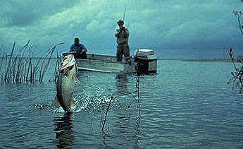 Bass fishing is a popular sport. Photo courtesy U.S. Fish and Wildlife Service