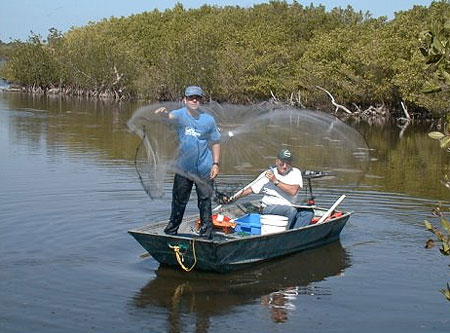 Cast nets are often used to catch mullet in saltwater habitats. Image courtesy U.S. Geological Survey