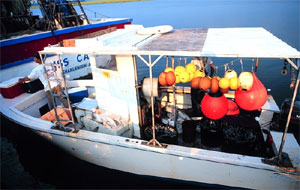 Shark fishing boat. Image courtesy NOAA