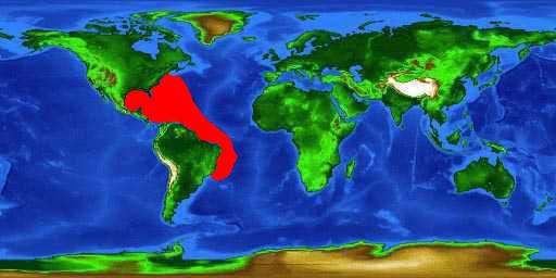 World distribution map for the blackfin tuna